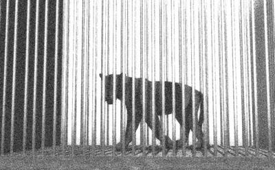 Der Panther (Schwarzweiß)